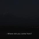 relocation1_klein